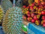 Durian Mangostan Frucht Thailand • Reise dich frei
