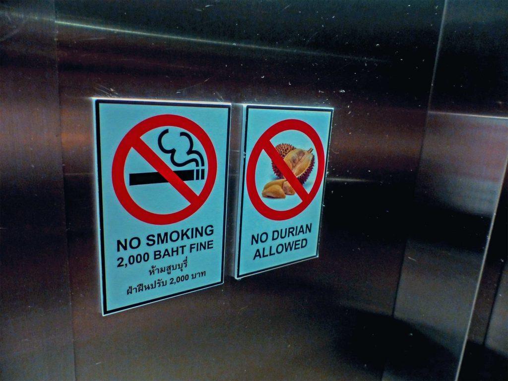 Durian im Aufzug • Reise dich frei