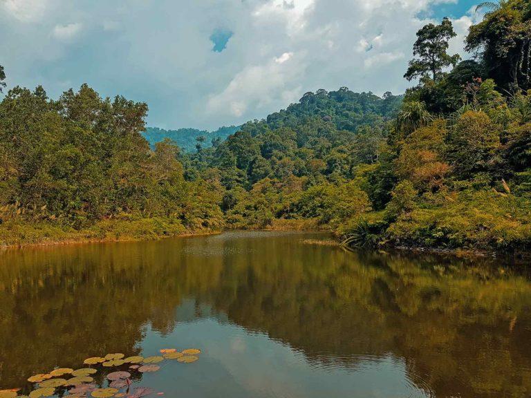 Khao Lak Reiseführer • Lam Ru Nationalpark