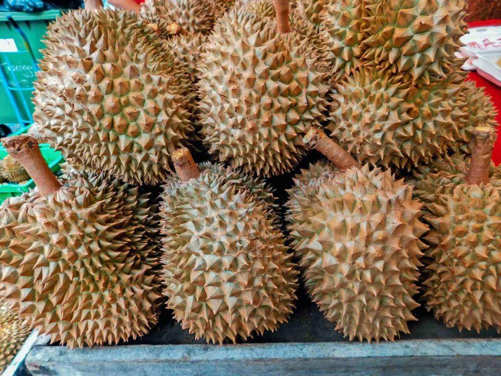 Durian • Stinkfrucht